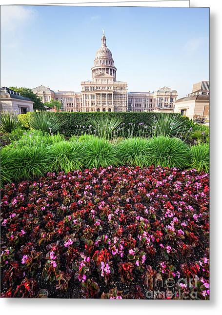 Austin Texas State Capitol Flowers Greeting Card by Paul Velgos