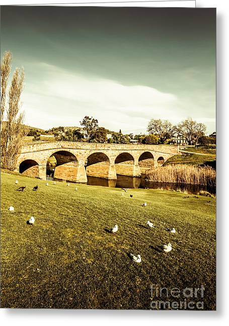 Australian Bridges Greeting Card by Jorgo Photography - Wall Art Gallery