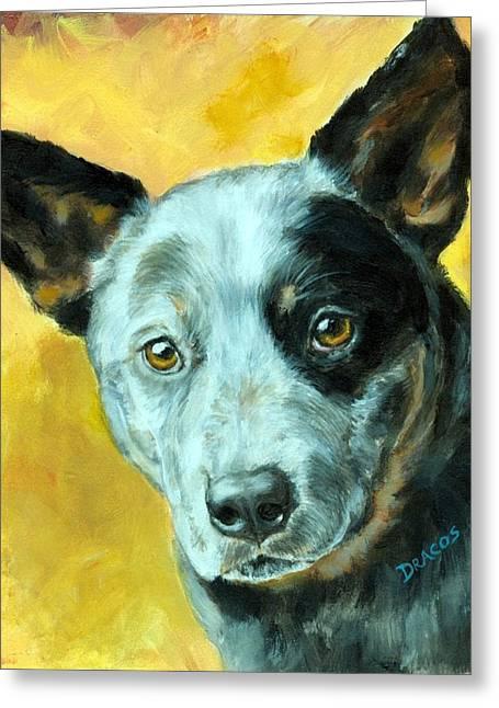 Australian Cattle Dog Blue Heeler On Gold Greeting Card