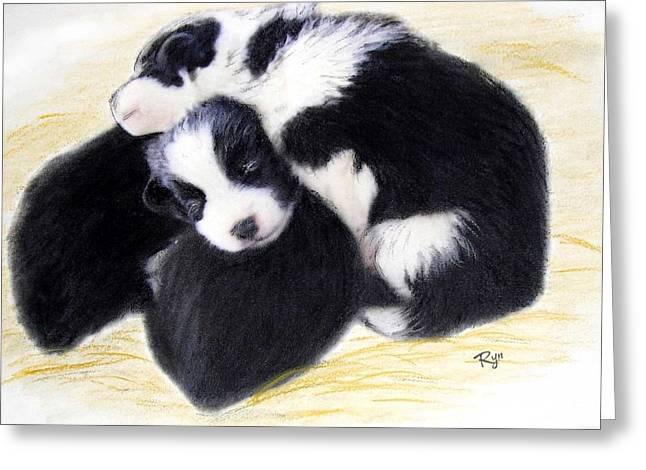 Australian Cattle Dog Puppies Greeting Card