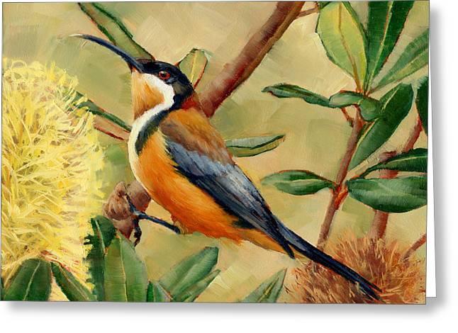 Australian Eastern Spinebill  Greeting Card