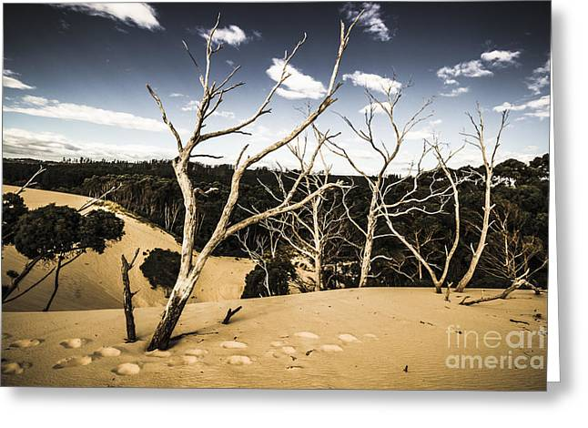 Australian Sand Plateau Greeting Card by Jorgo Photography - Wall Art Gallery