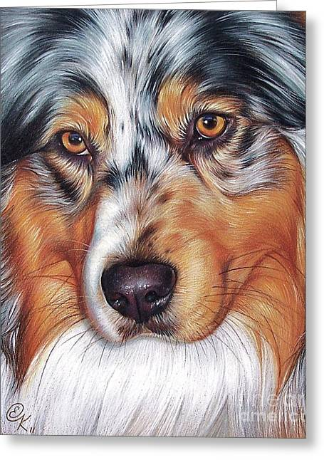 Australian Shepherd Greeting Card by Elena Kolotusha