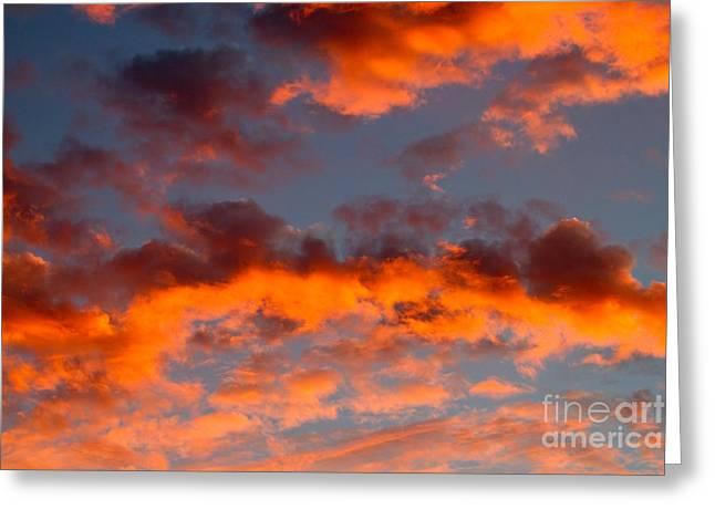 Australian Sunset Greeting Card by Louise Heusinkveld