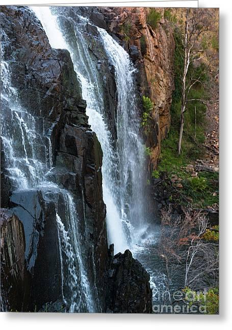 Australian Waterfall Grampians Greeting Card by Andrew Michael
