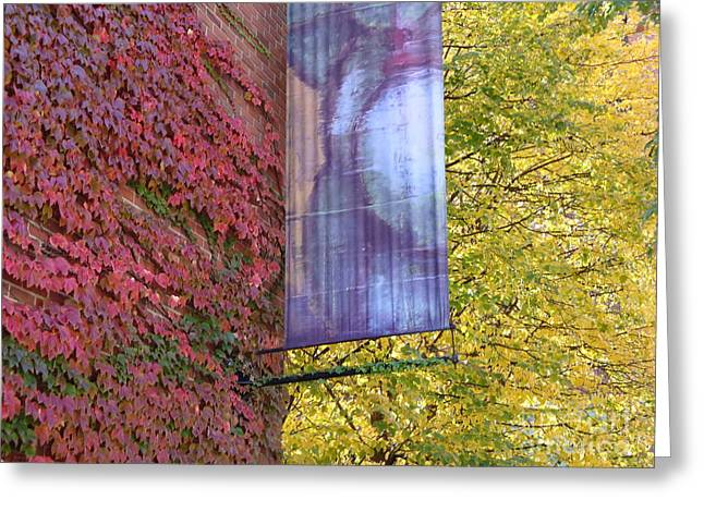Autum Colors Greeting Card by Robyn Leakey