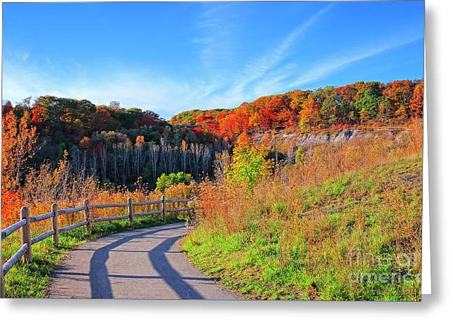 Greeting Card featuring the photograph Autumn Hiking Trail by Charline Xia