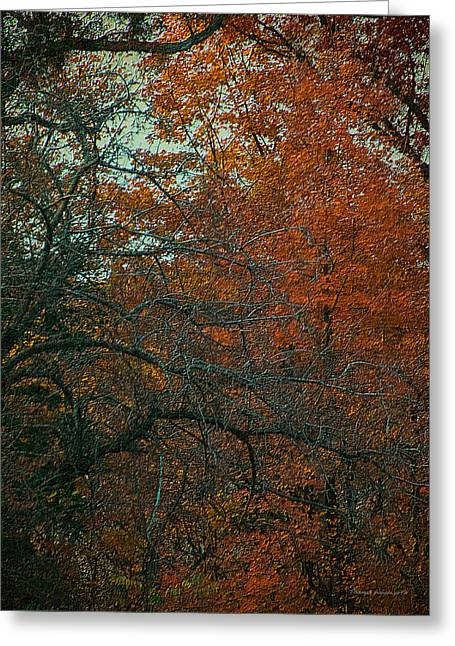 Autumn 2015 Orange Trees Pa 01 Vertical Greeting Card by Thomas Woolworth