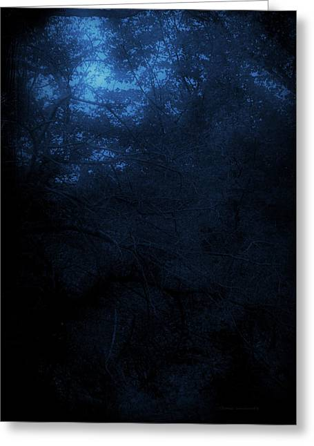 Autumn 2015 Trees By Moonlight Pa 03 Vertical Greeting Card by Thomas Woolworth