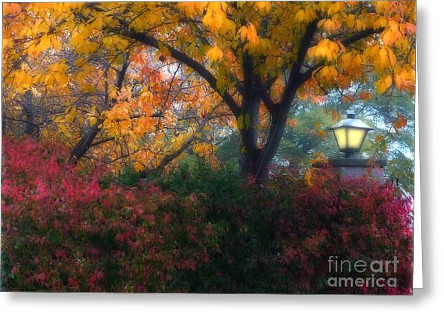 Autumn 3 Greeting Card
