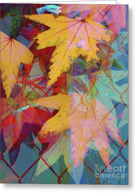 Autumn Abstract Greeting Card by Robert Ball