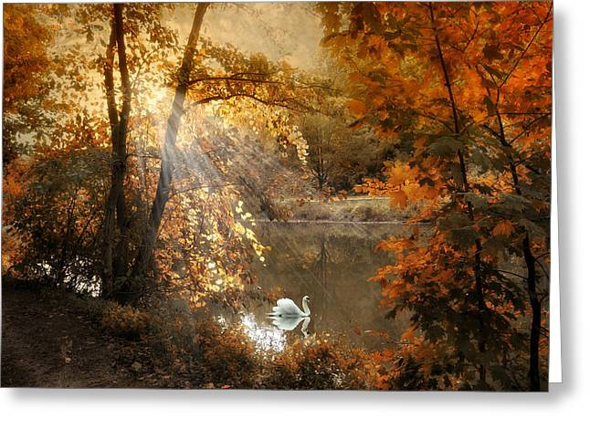 Autumn Afterglow Greeting Card by Jessica Jenney