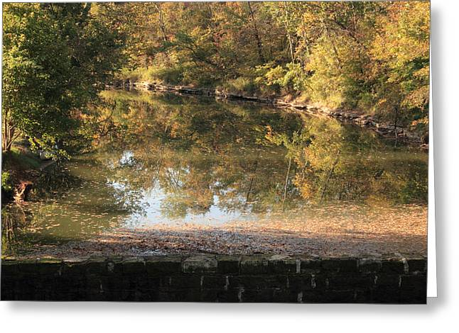 Autumn Afternoon Greeting Card by Lone Dakota Photography