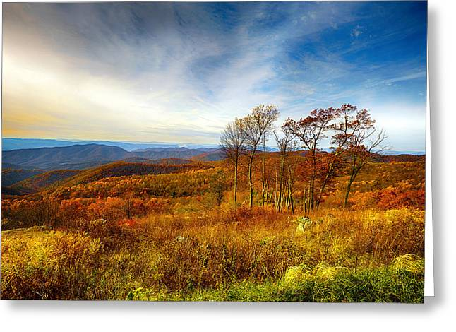 Autumn Afternoon Greeting Card by Renee Sullivan