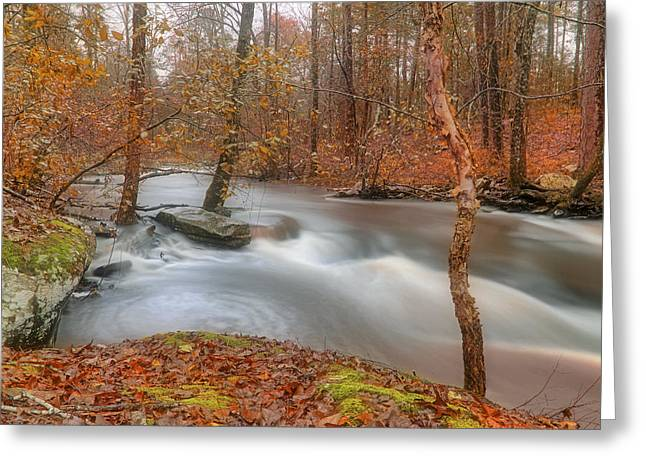 Autumn Along Cedar Creek - Arkansas - Petit Jean State Park Greeting Card by Jason Politte