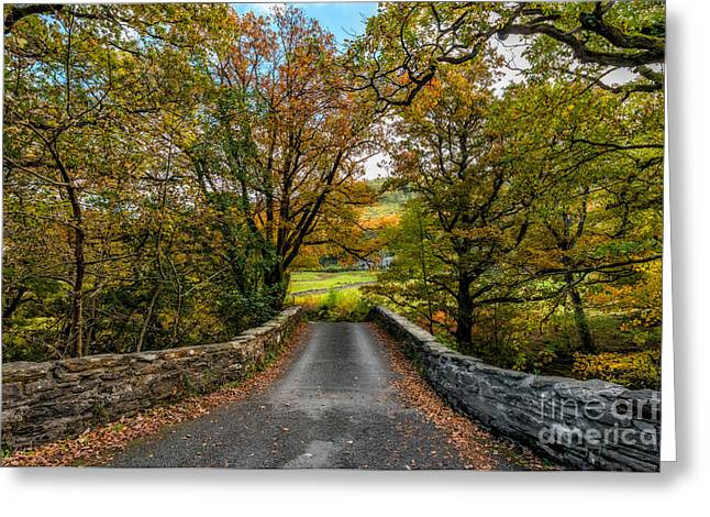 Autumn Ambiance Greeting Card by Adrian Evans