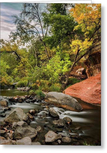 Autumn Arrives In Arizona  Greeting Card