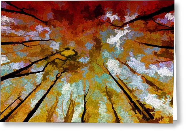 Autumn Ascent Greeting Card