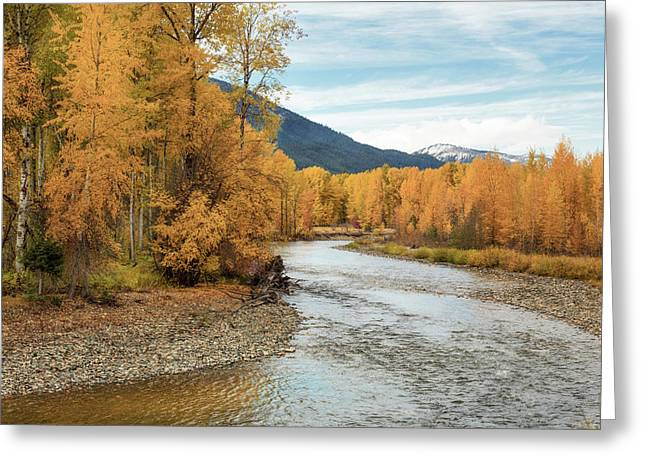 Autumn Aspen By The River Greeting Card by Mary Jo Allen