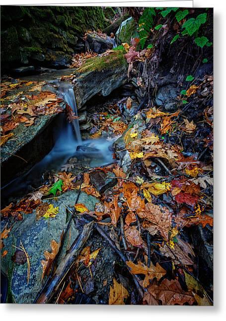 Autumn At A Mountain Stream Greeting Card by Rick Berk