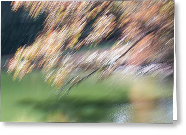 Greeting Card featuring the photograph Autumn At Allerton Pond by Deborah Hughes