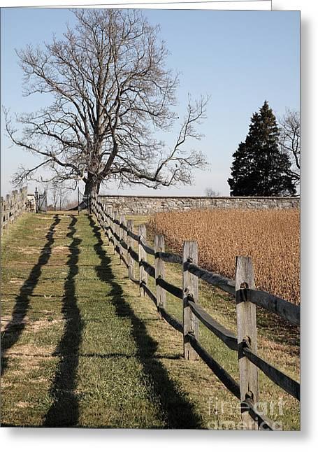 Autumn At Antietam Greeting Card