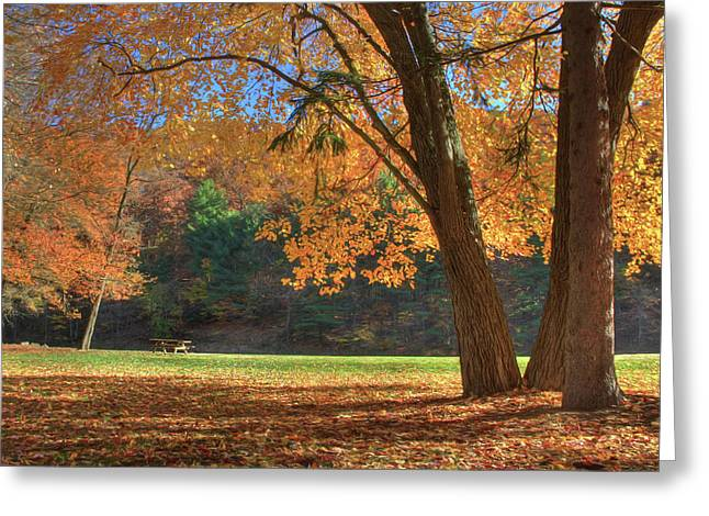Greeting Card featuring the photograph Autumn At Lykens Glen by Lori Deiter