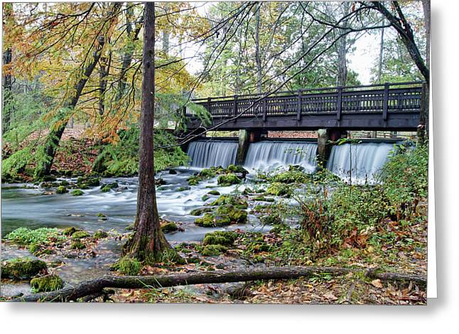 Greeting Card featuring the photograph Autumn At Maramec Spring by Cricket Hackmann