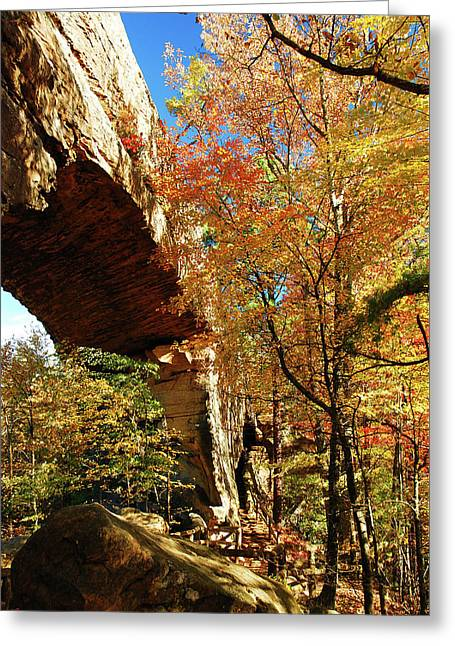 Autumn At Natural Bridge State Resort Greeting Card