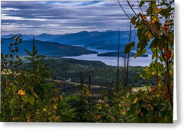 Autumn At Priest Lake Greeting Card by Yeates Photography