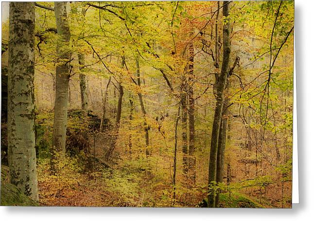 Autumn At Rim Rock Greeting Card by Sandy Keeton