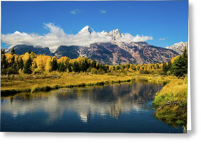 Autumn At Schwabacher's Landing Greeting Card by TL Mair