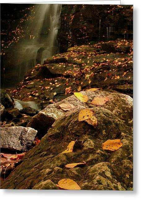 Autumn At Soco Falls Greeting Card by Dan Sproul