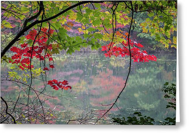 Autumn At Spirit Springs Greeting Card
