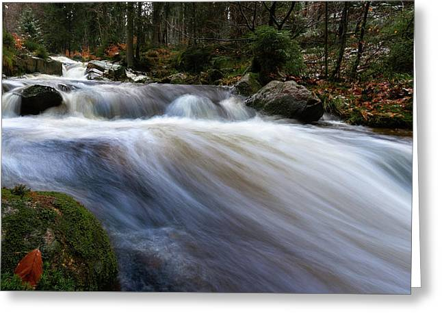 Greeting Card featuring the photograph Autumn At The Bode, Harz by Andreas Levi