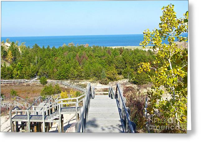 Autumn At The Dunes Greeting Card