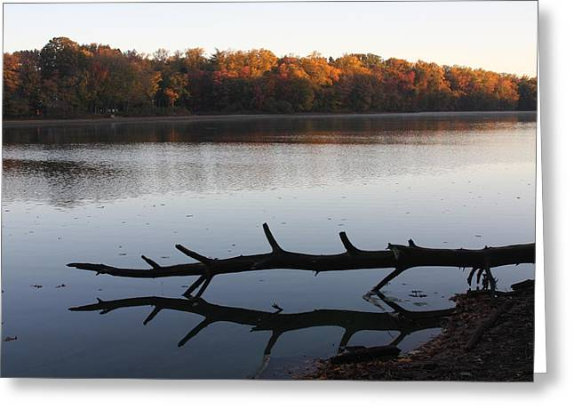 Greeting Card featuring the photograph Autumn At The Lake by Vadim Levin