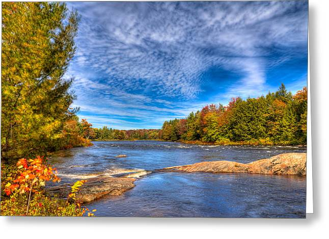 Autumn At The Moose River Road Greeting Card by David Patterson