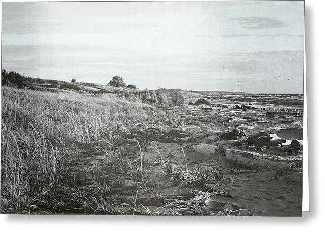 Greeting Card featuring the photograph Autumn At The Mouth Of The Big Sable 2.0 by Michelle Calkins