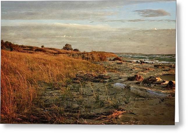 Greeting Card featuring the photograph Autumn At The Mouth Of The Big Sable by Michelle Calkins