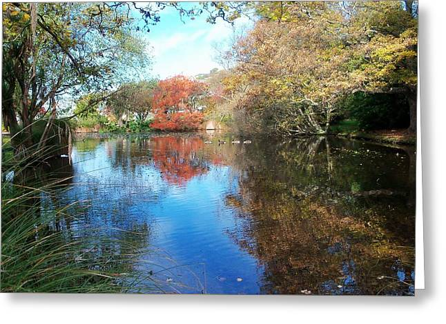 Autumn At The Park Greeting Card