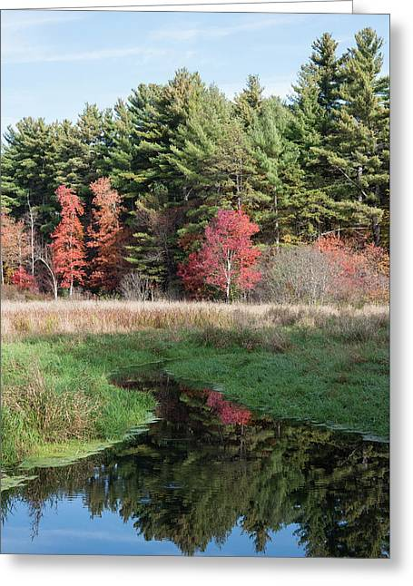 Autumn At The River Greeting Card