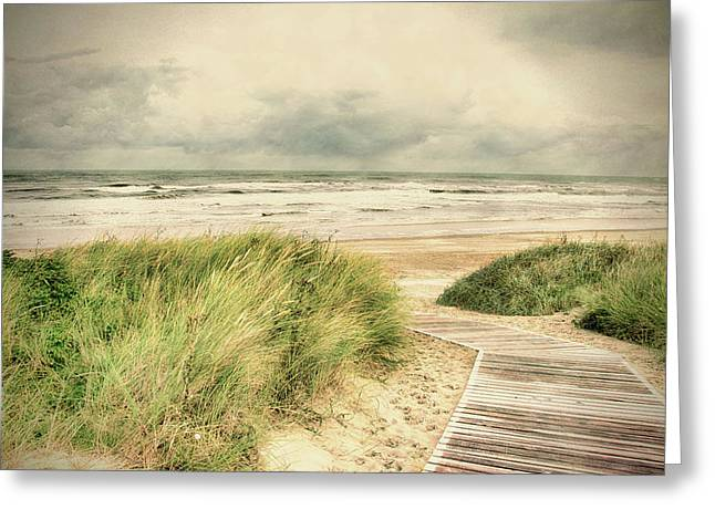 Autumn At The Sea Greeting Card by Nicole Frischlich