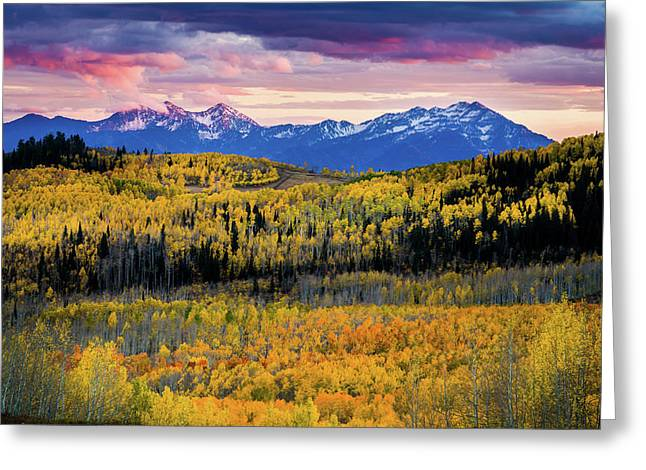 Autumn At The Top Of The World Greeting Card by TL Mair