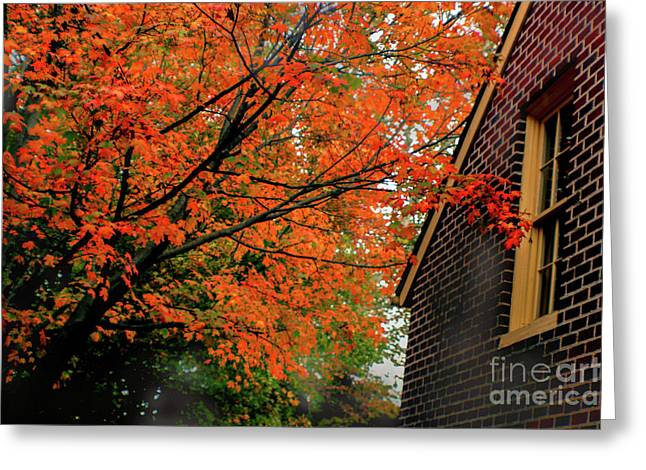 Autumn At The Window Greeting Card