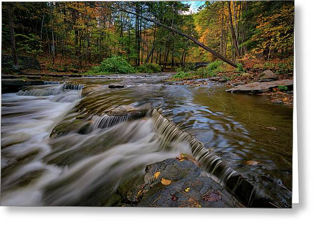 Autumn At Wolf Creek Greeting Card by Rick Berk