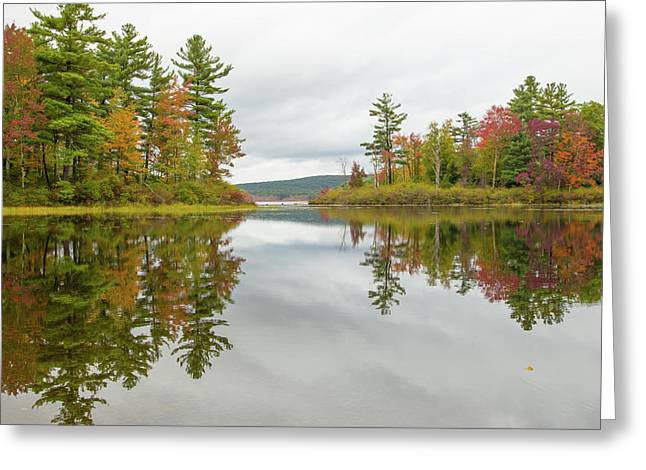 Autumn At Wood Creek Greeting Card