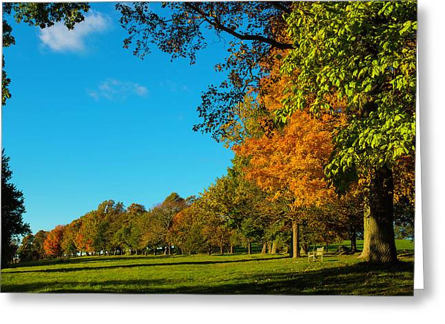 Autumn At World's End Greeting Card