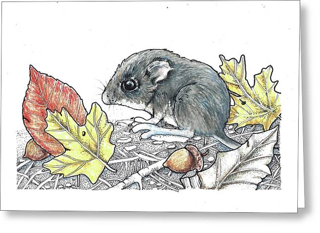 Autumn Baby Greeting Card by Julie Townsend