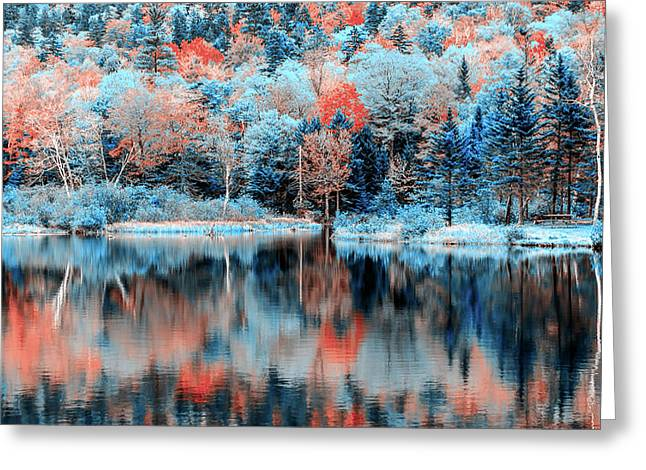Autumn Beauty In Blue Greeting Card